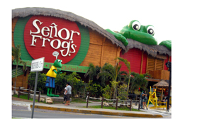 Cancun Senor Frogs spring break